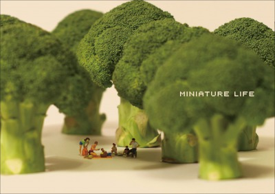 MINIATURE LIFE